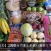 2週間分の野菜