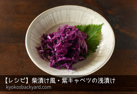 柴漬け風・紫キャベツの浅漬け